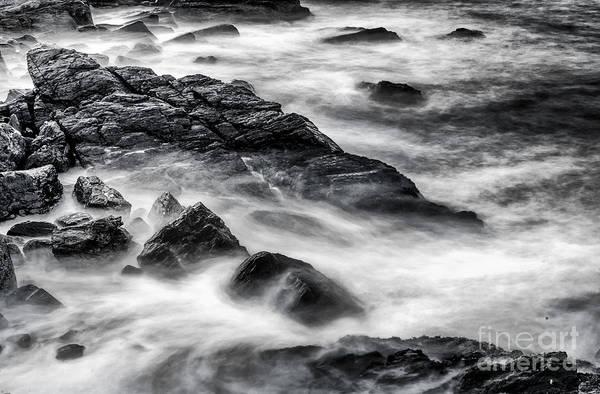 Casco Bay Photograph - On The Rocks by Scott Thorp