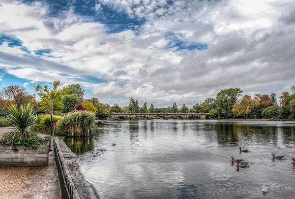 Photograph - On The Serpentine by Ross Henton
