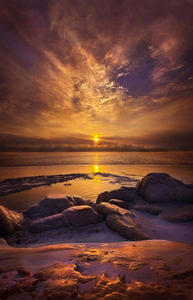 Photograph - On The Shore Again by Phil Koch