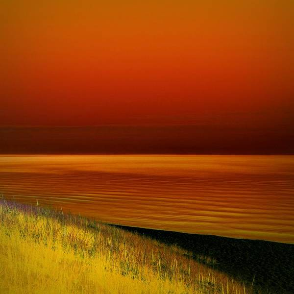 Photograph - On The Shore by Michelle Calkins