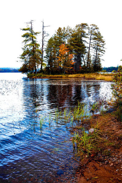 Photograph - On The Shore Of Raquette Lake by David Patterson