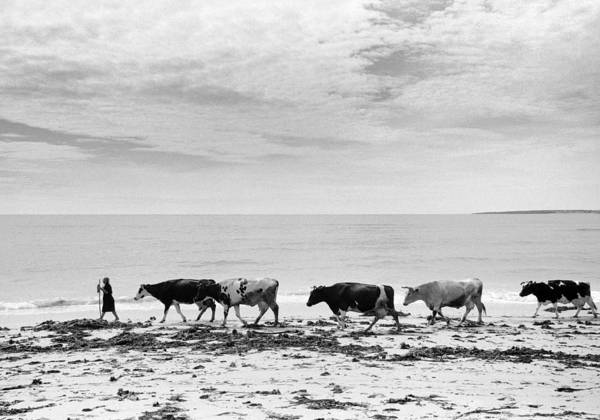 Blanco Y Negro Wall Art - Photograph - On The Shores Of Galicia by Peter Eastland
