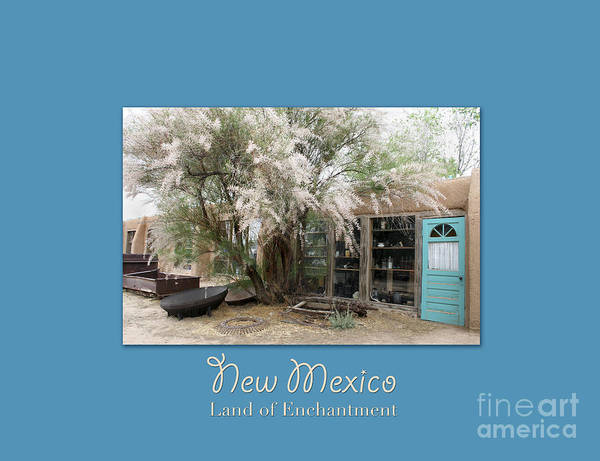 Wall Art - Photograph - On The Turquoise Trail by Heidi Hermes