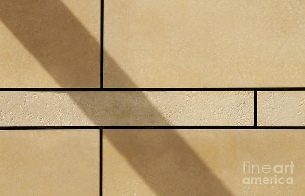 Wall Art - Photograph - On The Wall by Dan Holm