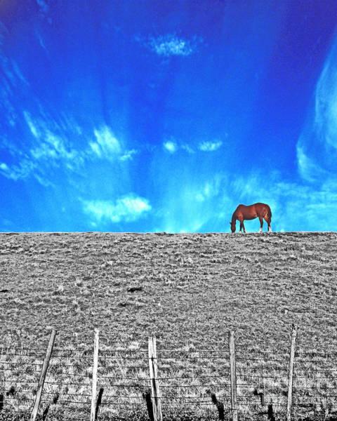 Digital Art - On Top Of The Levee Hwy 105 by Lizi Beard-Ward