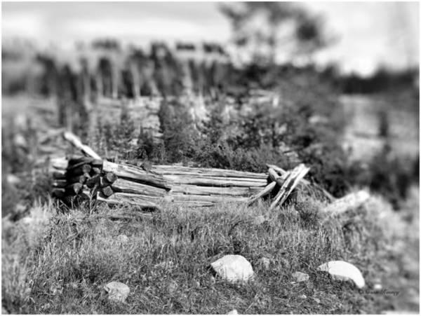 Photograph - Once Apon A Homestead by Susan Kinney