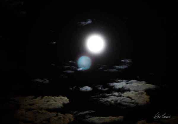 Photograph - Once In A Blue Moon by Diana Haronis