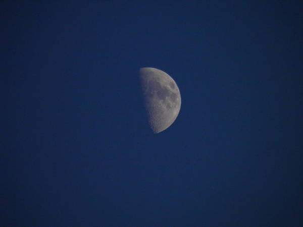 Wall Art - Photograph - Once In A Blue Moon by Nick Kirby