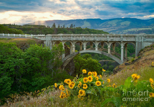 Rowena Photograph - Once Upon A Time by Idaho Scenic Images Linda Lantzy