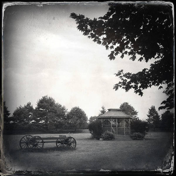Photograph - Once Upon An Olden Time by Natasha Marco