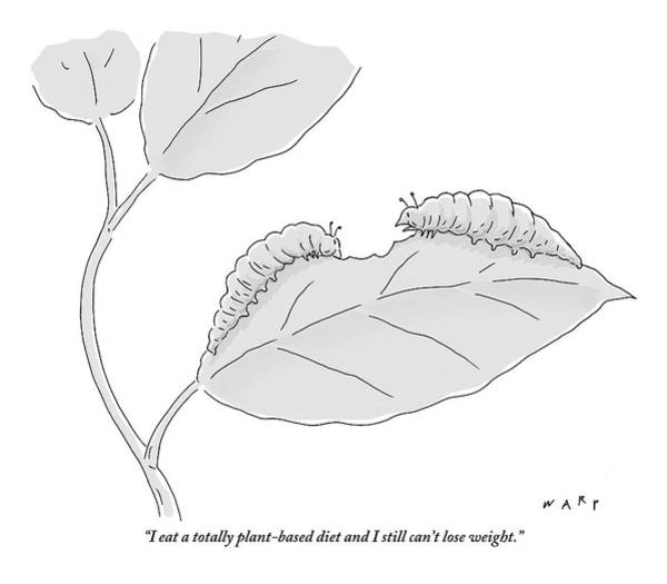 Plant Drawing - One Caterpillar Speaks To Another As They Munch by Kim Warp