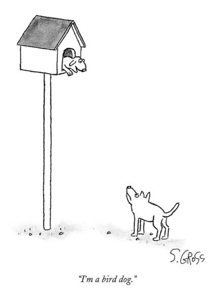 House Pet Drawing - One Dog Is In A Bird House While Another Looks by Sam Gross
