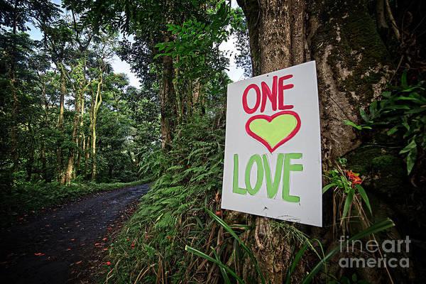 Photograph - One Love Maui Hawaii by Edward Fielding