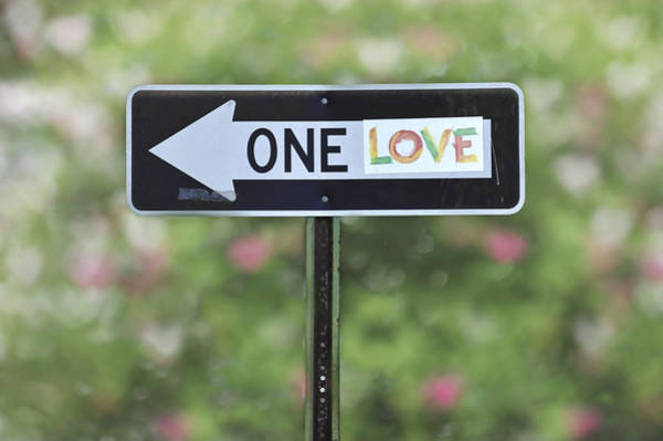 Photograph - One Love by Terry DeLuco