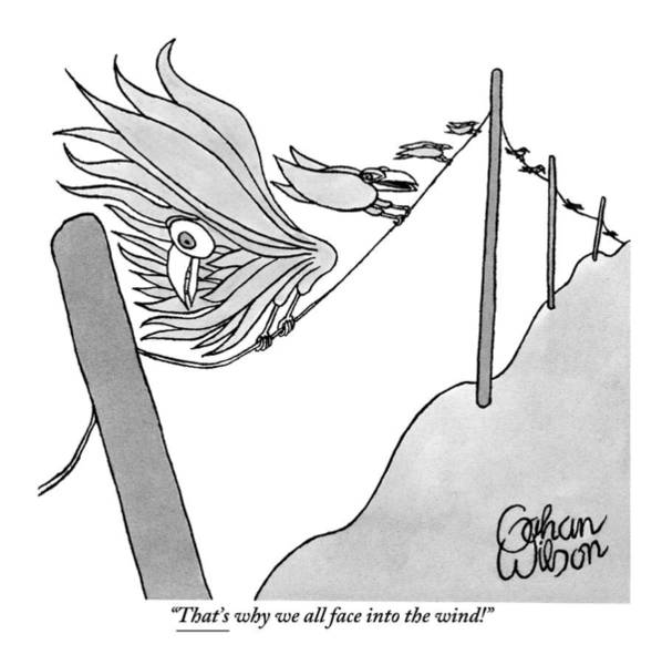 Wind Drawing - One Of Many Birds On An Electrical Wire Counsels by Gahan Wilson