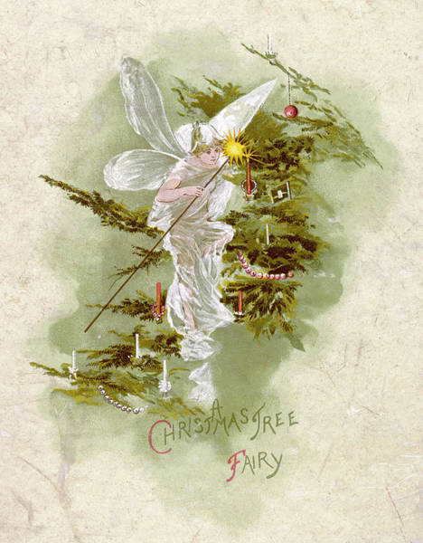 Christmas Tree Drawing - One Of The Christmas Tree Fairy's by Mary Evans Picture Library