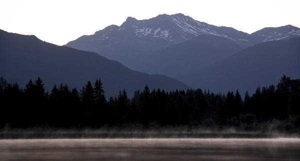 Duck Hunt Photograph - One Small Duck One Big Mountain by Aaron Bedell