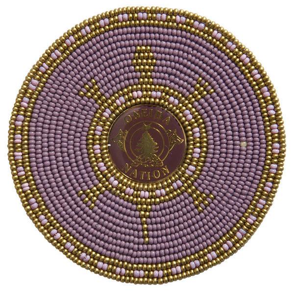Mixed Media - Oneida Nation 110506 by Douglas K Limon