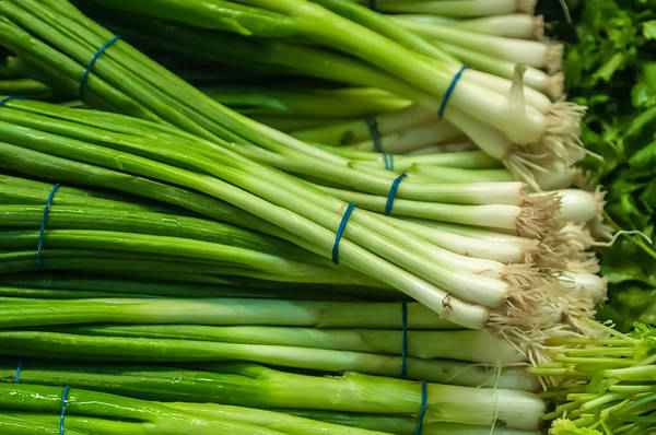 Photograph - Onion With Chives by Alex Grichenko