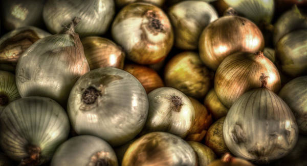 Photograph - Onions by David Morefield