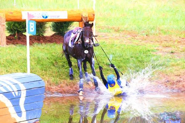 Fairhill Photograph - Oops by Alice Gipson