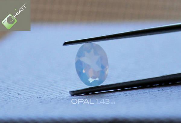 Digital Art - Opal  by Jhiatt