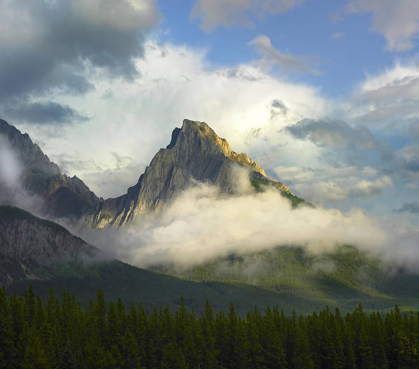 Mountain Peak Wall Art - Photograph - Opal Range In Fog Kananaskis Country by Tim Fitzharris
