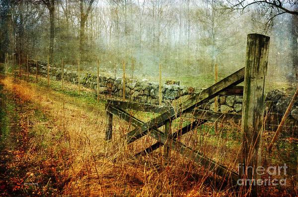 Photograph - Open Gate by Randi Grace Nilsberg