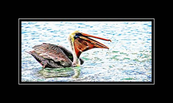 Photograph - Open Mouthed Pelican by Alice Gipson