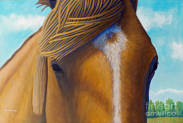 Wall Art - Painting - Open Range by Brian  Commerford