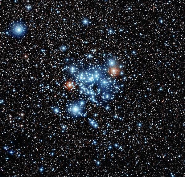 Astrophysics Wall Art - Photograph - Open Star Cluster Ngc 3766 by European Southern Observatory