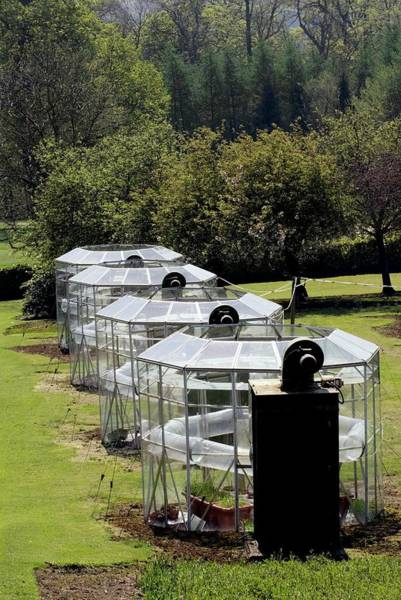 Glasshouse Photograph - Open-top Chambers by Simon Fraser/science Photo Library