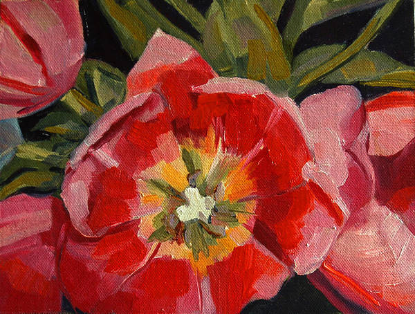 Dutch Tulip Painting - Opening by Pattie Wall