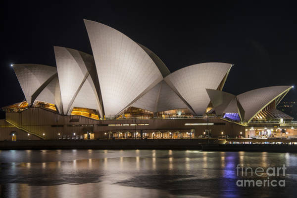 Photograph - Opera House After Dark by Bob Phillips