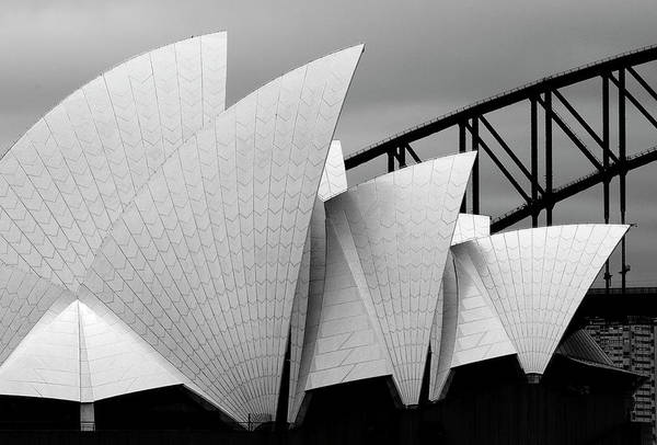 Wall Art - Photograph - Opera House Sydney by Alida Van Zaane