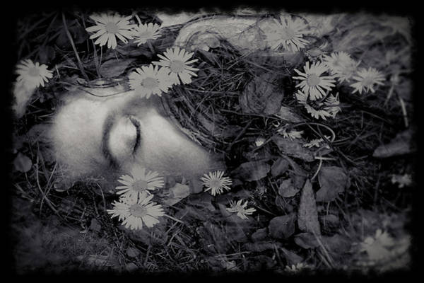 Photograph - Ophelia by Susan Maxwell Schmidt