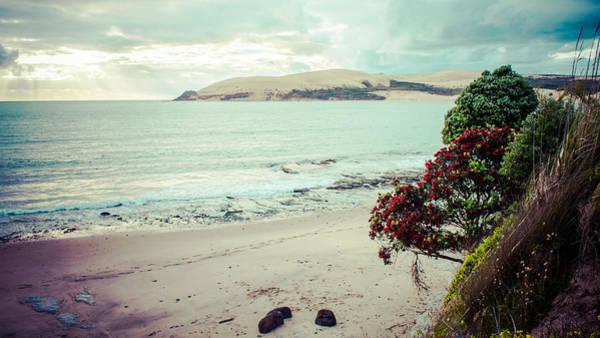 Wall Art - Photograph - Opononi Beach New Zealand by Igor Fracellio