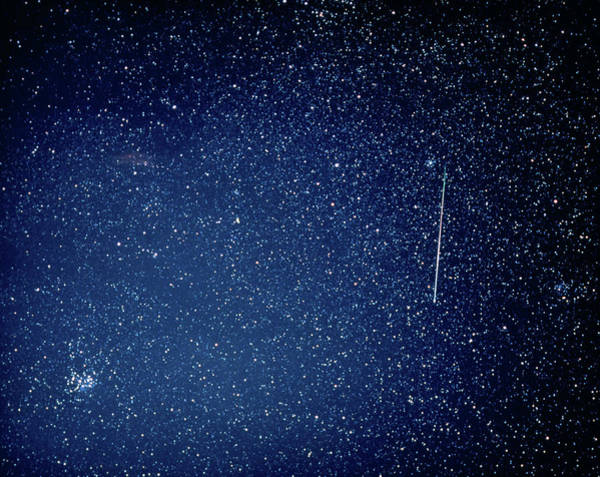 Perseid Wall Art - Photograph - Optical Image Of A Perseid Meteor Track by Rev. Ronald Royer/science Photo Library