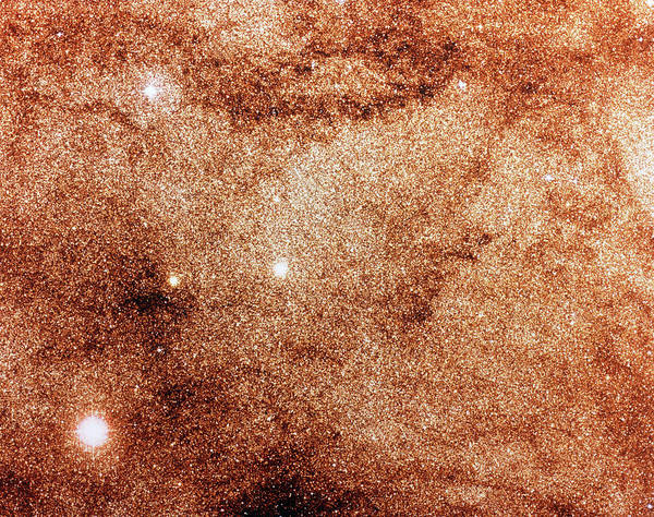 Dense Photograph - Optical Image Of Dense Stellar Field In Milky Way by Royal Observatory, Edinburgh/aatb/science Photo Library