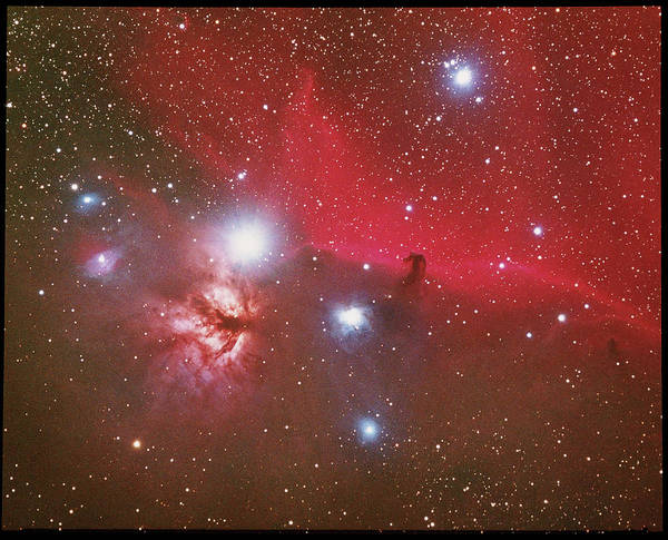 Evolution Photograph - Optical Image Of The Horsehead Nebula by Tony & Daphne Hallas/science Photo Library