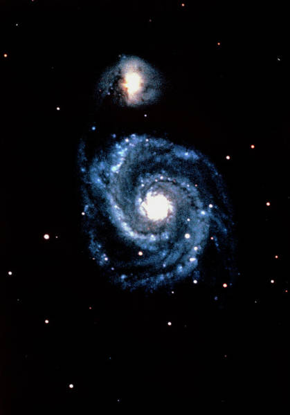 Interacting Galaxies Wall Art - Photograph - Optical Image Of The Whirlpool Galaxy by U.s. Naval Observatory/science Photo Library