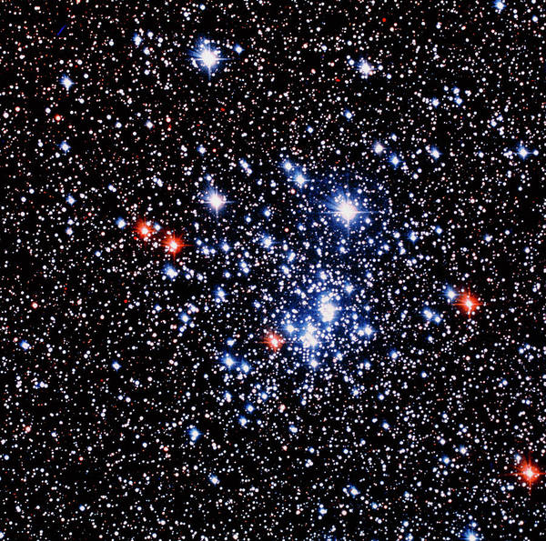 Wall Art - Photograph - Optical Photo Of The Open Star Cluster Chi Persei by Celestial Image Co./science Photo Library