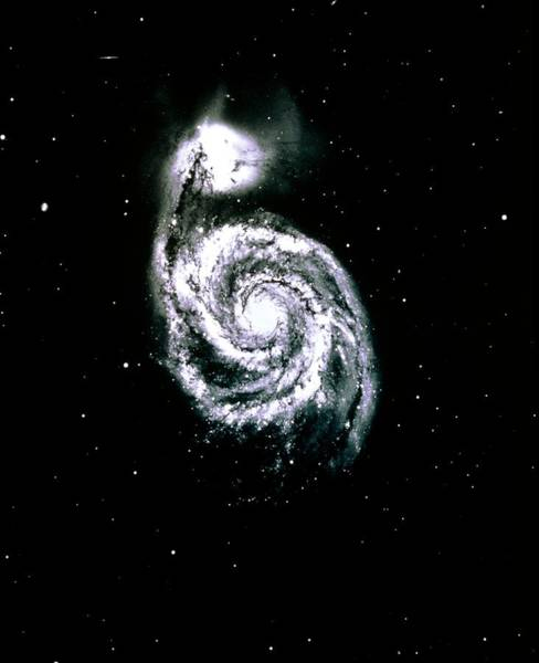 Interacting Galaxies Wall Art - Photograph - Optical Photograph Of The Whirlpool Galaxy by Noao/science Photo Library