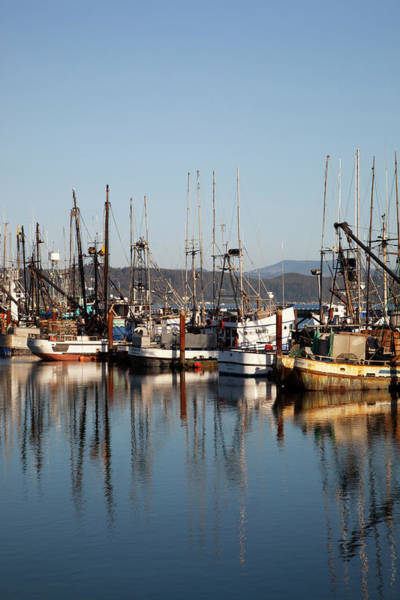 Commerce Photograph - Or, Newport, Fishing Boats by Jamie and Judy Wild