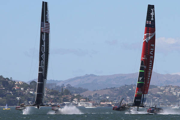 Photograph - Oracle And New Zealand by Steven Lapkin