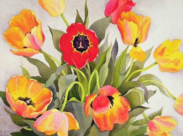 Truth Painting - Orange And Red Tulips  by Christopher Ryland
