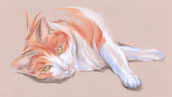Pastel - Orange And White Tabby Cat With Gold Eyes by MM Anderson