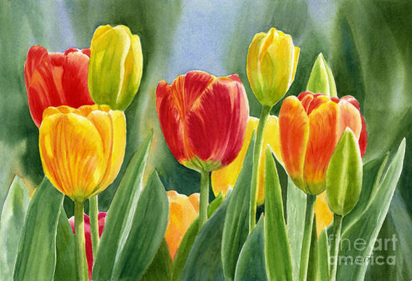 Freeman Wall Art - Painting - Orange And Yellow Tulips With Background by Sharon Freeman