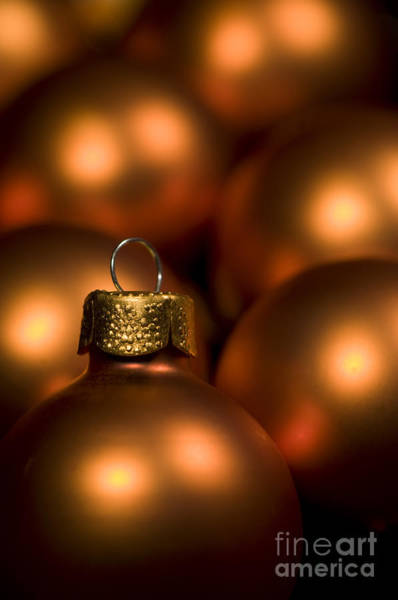 Yule Photograph - Orange Baubles by Anne Gilbert