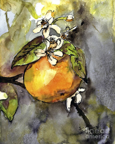 Painting - Orange Blossom Botanical Watercolor And Ink By Ginette by Ginette Callaway